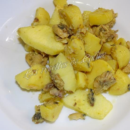 Salade aux 2 pommes et sardines0116