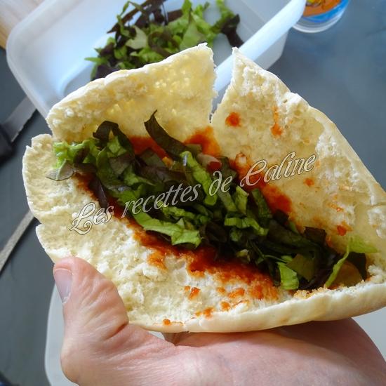 Kebab au poulet11