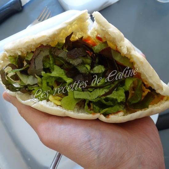Kebab au poulet16