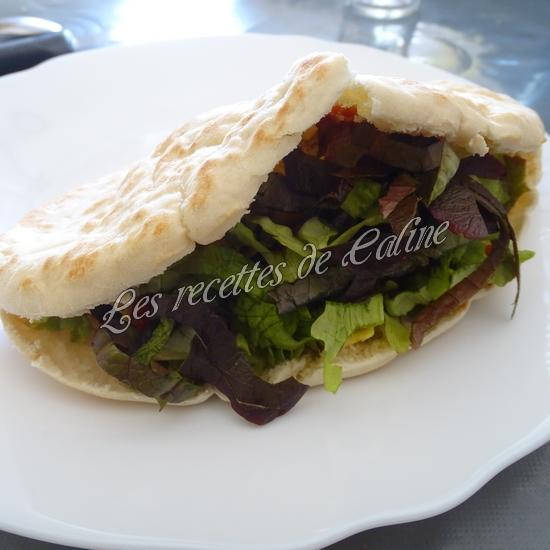 Kebab au poulet17