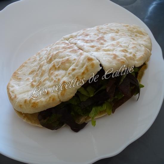 Kebab au poulet19