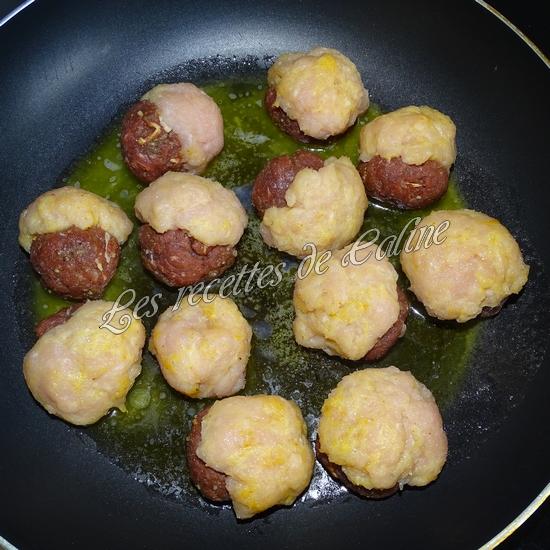 Boulette Bi-gout au boeuf et au poulet23