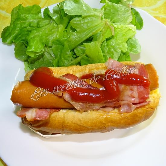 Breakfast Dog15