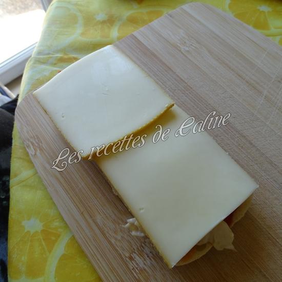 Panini au poulet et fromages15